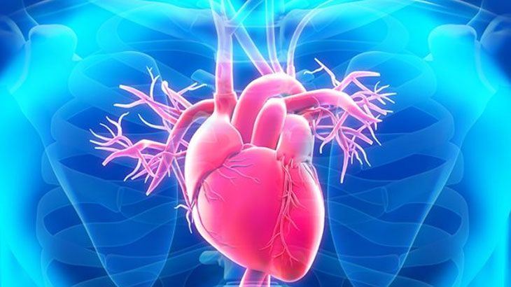 Minimal İnvaziv Kalp Cerrahisi