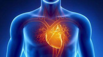 Koroner Arter Hastalığı Nedir, Nasıl Tedavi Edilir?